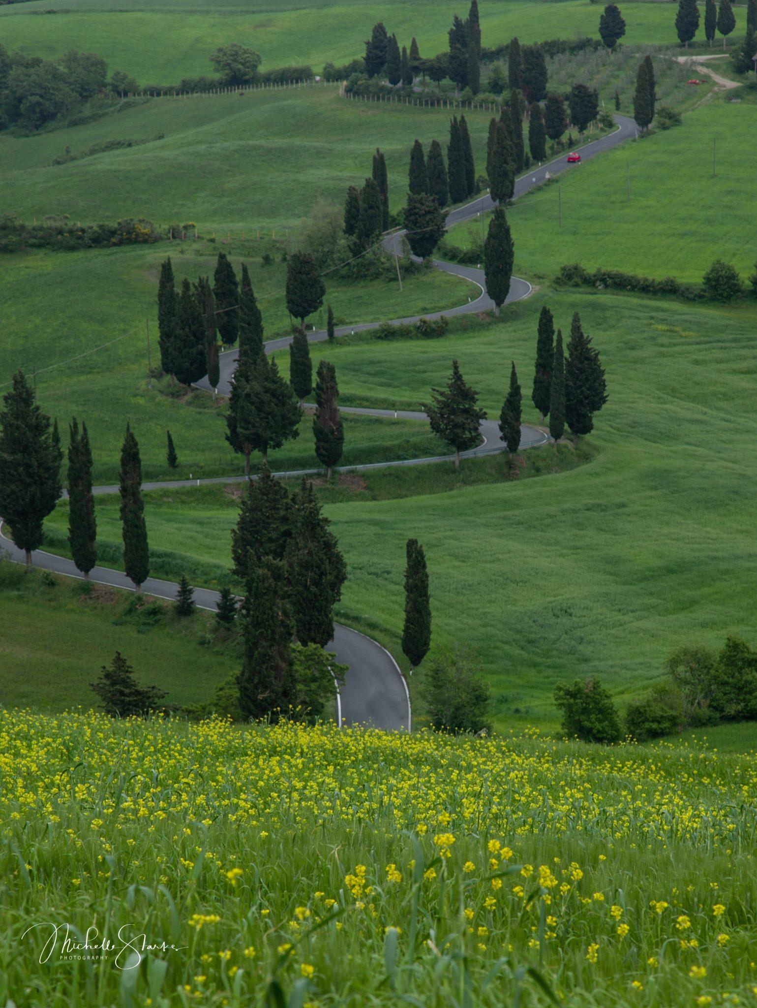 Tuscan Road, Tuscany, Italy