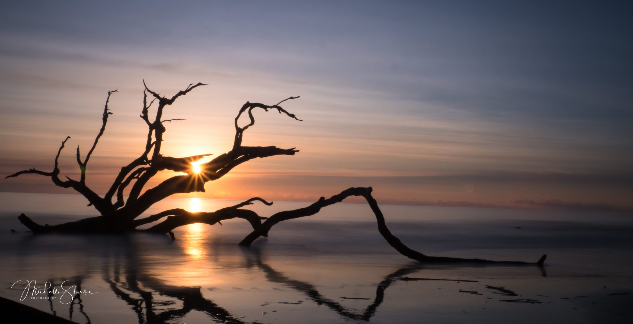 Driftwood Beach, Jekyll Island, GA
