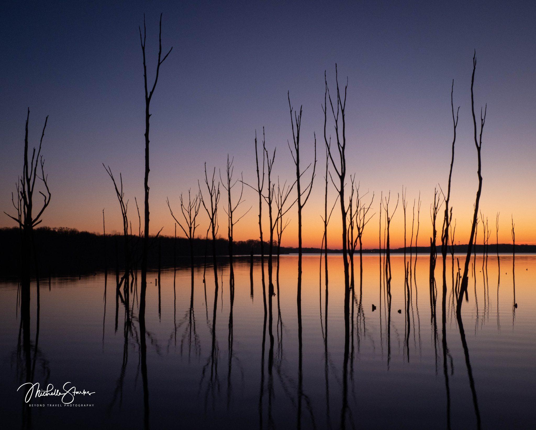 Dead Trees at Sunrise, Manasquan Reservoir, Manasquan, NJ 1/26/20